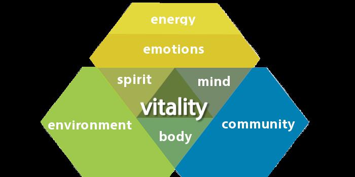 Vitality News Concept2